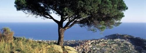 Sanremo - Parco di Monte Bignone